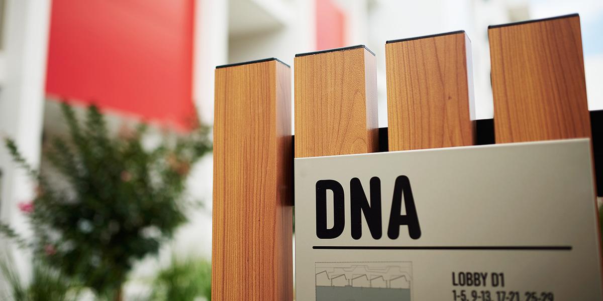 DNA_5_1200x600